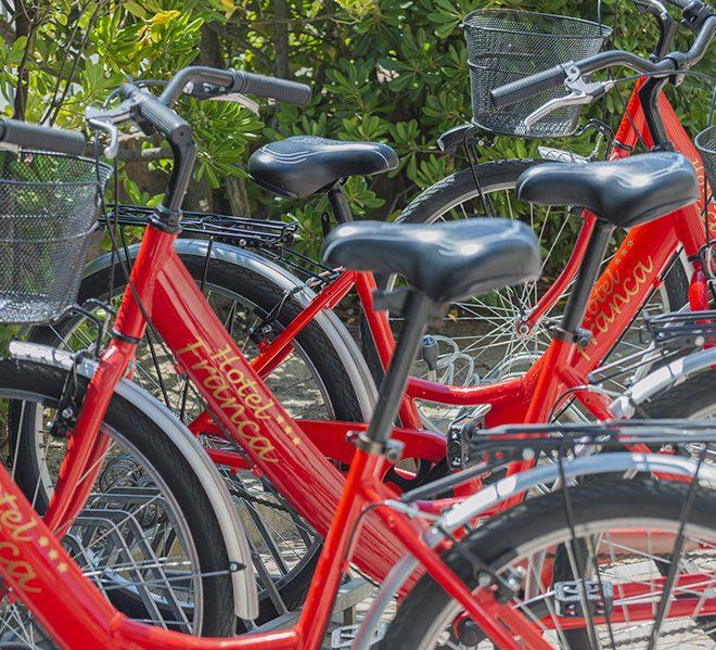 biciclette-alta-def-2000-L