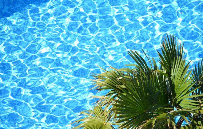 piscina-e-palma